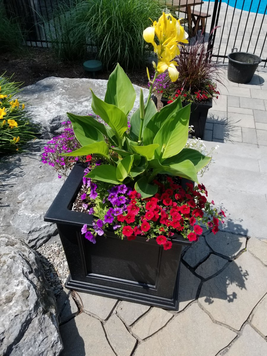 Ottawa spring planters from Carp Garden Services