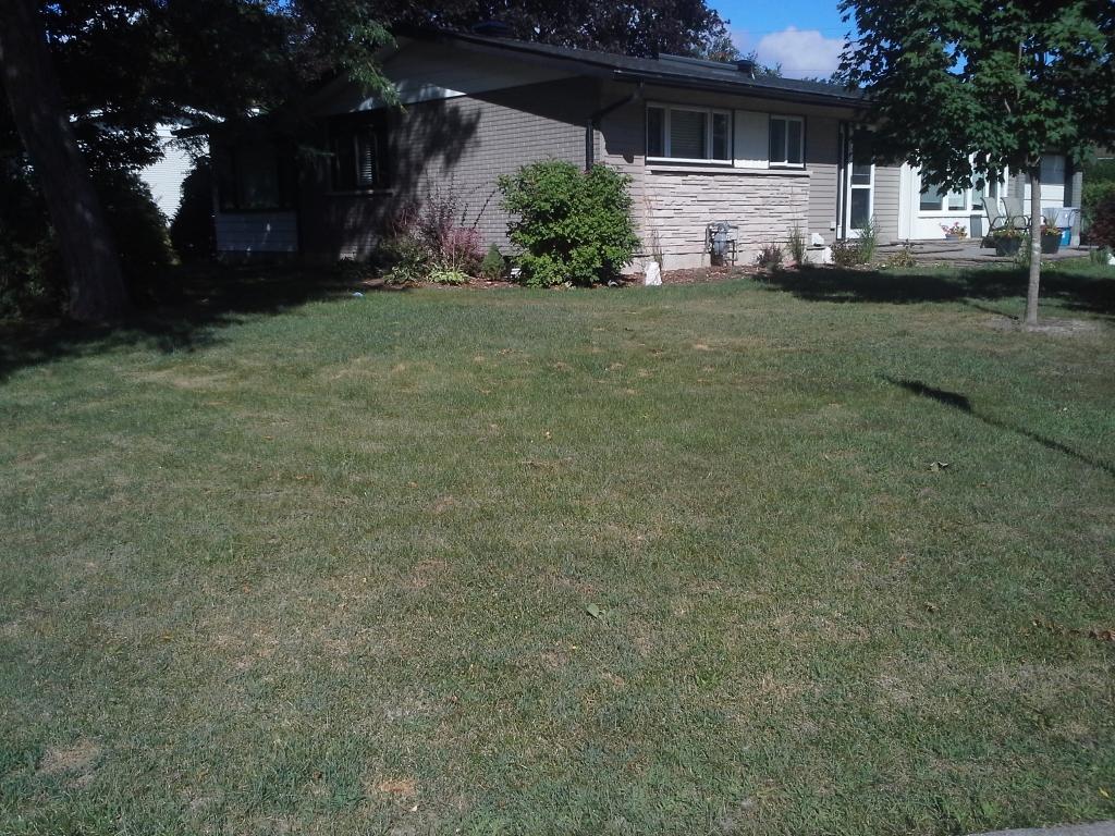 Before Lawn Ottawa Carp Garden Services